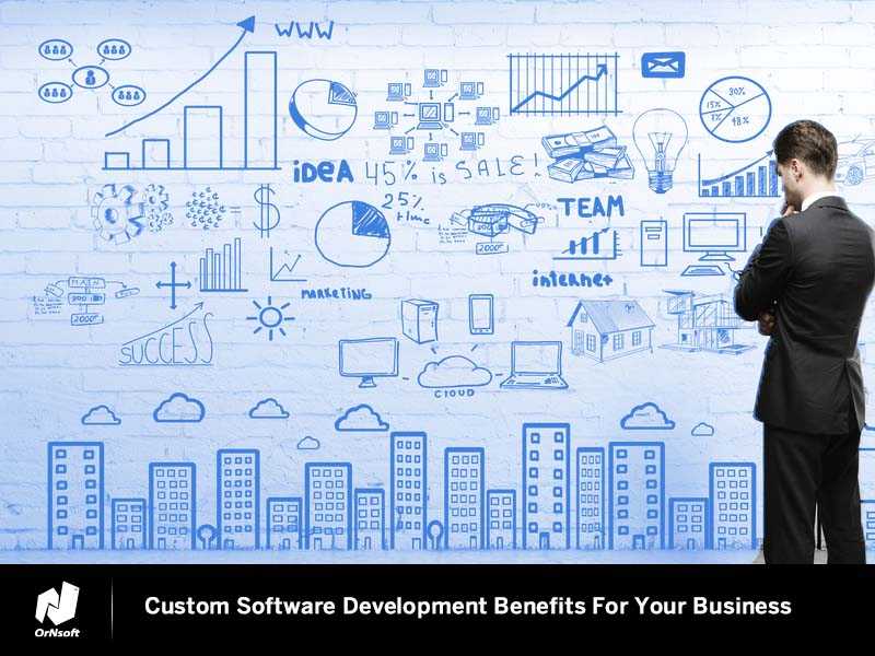 Custom Software Development Benefits For Your Business OrNsoft